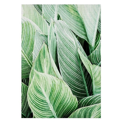 Tropical Leaves Print Art by Americanflat, a Prints for sale on Style Sourcebook