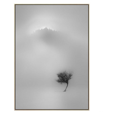 Awaiting The Light Canvas Print with Floating Frame
