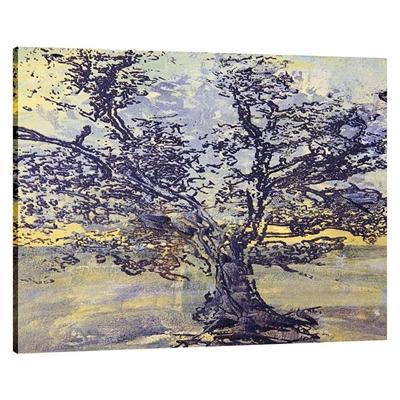Bolo Tree Landscape Canvas Print