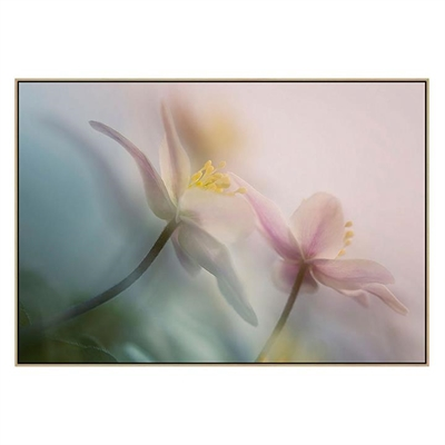 Gentle Canvas Print with Floating Frame