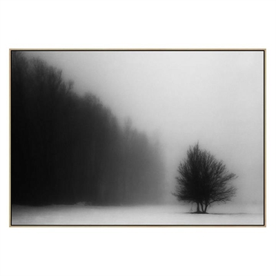 Out of Nowhere Canvas Print with Floating Frame by United Interiors, a Prints for sale on Style Sourcebook
