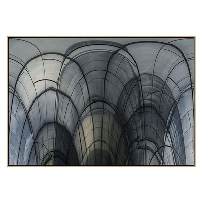 Cobweb Cathedral Canvas Print with Floating Frame by United Interiors, a Prints for sale on Style Sourcebook