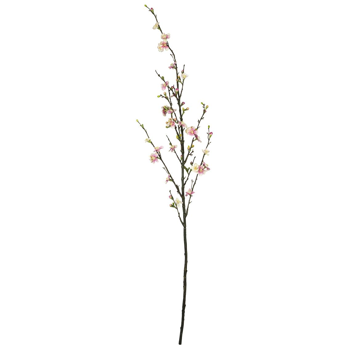 Quince Blossom Stem Size W 36cm x D 36cm x H 130cm in Light Pink Plastic/Fabric/Wire Freedom by Freedom, a Plants for sale on Style Sourcebook