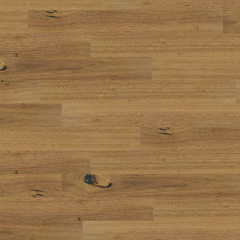 Blackbutt - 136mm by Plantino Native Royale, a Medium Neutral Engineered Boards for sale on Style Sourcebook