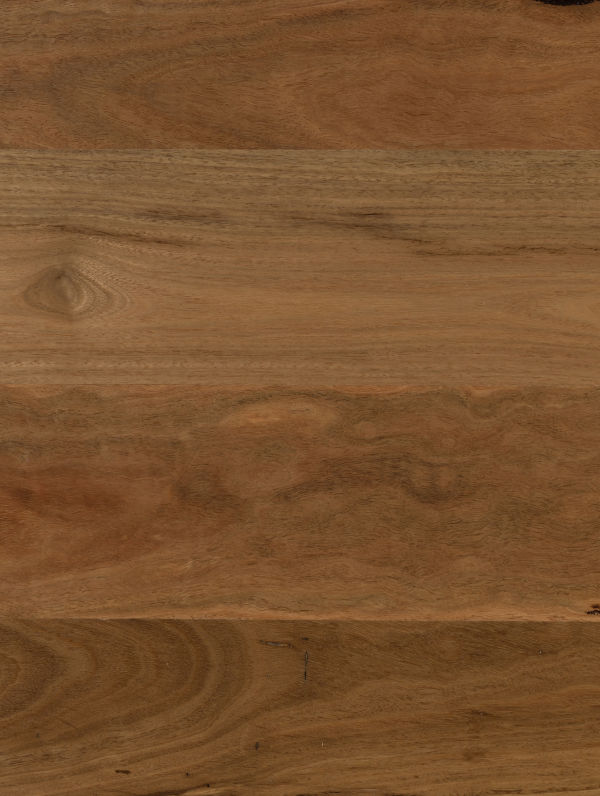Spotted Gum - 180mm by Plantino Native Royale, a Medium Neutral Engineered Boards for sale on Style Sourcebook