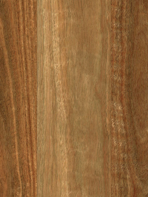 NSW Spotted Gum by Abode Prime, a Medium Neutral Vinyl for sale on Style Sourcebook