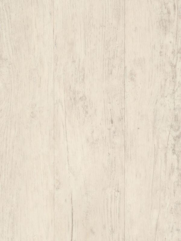 Bleached Chestnut by Genero Design Platinum, a Light Neutral Vinyl for sale on Style Sourcebook