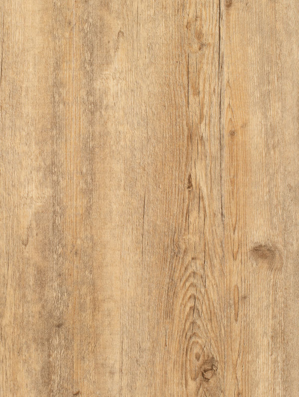 Coastal Oak by Genero Multi-lay Wideboard, a Medium Neutral Vinyl for sale on Style Sourcebook