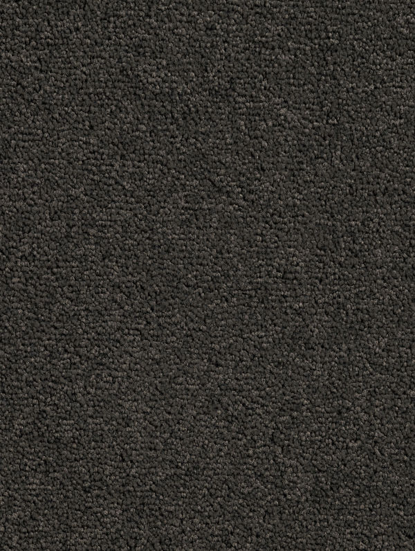 Camira, Pinedale by Brease, a Twist for sale on Style Sourcebook