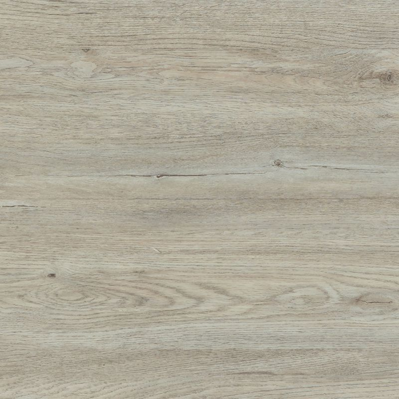 Boleyn Oak by Gereno Multi-lay Home, a Light Neutral Vinyl for sale on Style Sourcebook