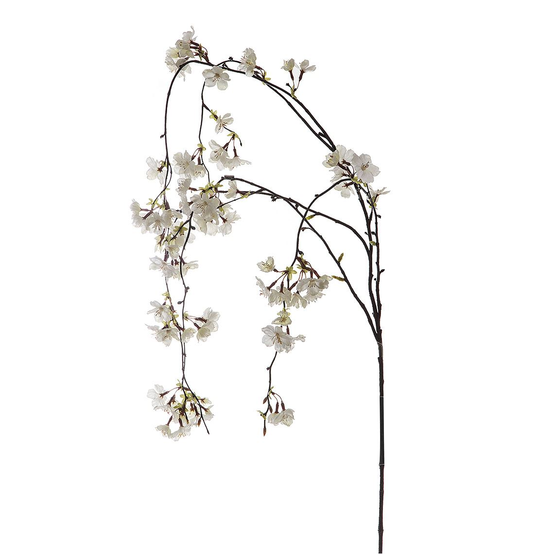 Cherry Blossom Size W 17cm x D 5cm x H 119cm in White Fabric/Wire Freedom by Freedom, a Plants for sale on Style Sourcebook