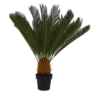 Set of 2 Artificial Cycad in Pot - Large by Searles, a Plants for sale on Style Sourcebook