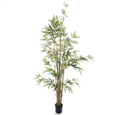 Artificial Potted Bamboo Tree with Natural Trunk, 160cm by Florabelle, a Plants for sale on Style Sourcebook