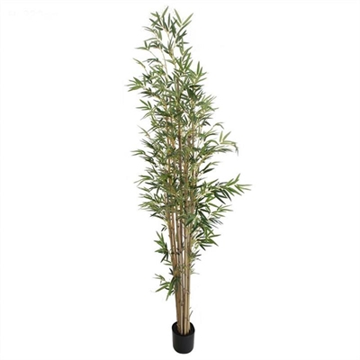 Artificial Potted Bamboo Tree with Natural Trunk, 220cm by Florabelle, a Plants for sale on Style Sourcebook
