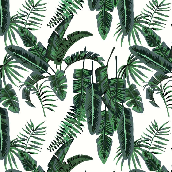 Banana Palms Wallpaper by Grace Garrett, a Wallpaper for sale on Style Sourcebook