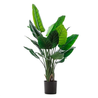 Home Republic Potted Plants Bird Of Paradise 135cm - Birdofparadise By Adairs by Home Republic, a Plants for sale on Style Sourcebook