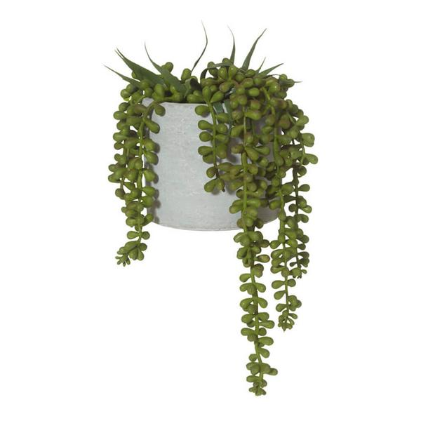 STRING OF PEARLS IN CONCRETE POT