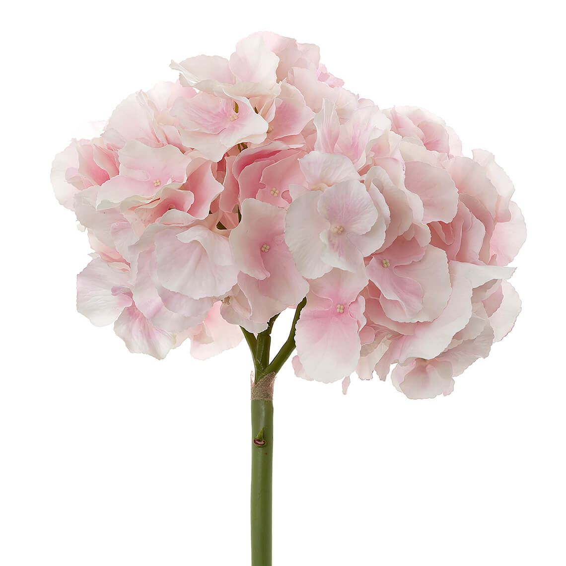 Flora Hydrangea Stem Artificial Flower Size W 22cm x D 22cm x H 54cm in Light Pink Plastic/Polyester Freedom by Freedom, a Plants for sale on Style Sourcebook