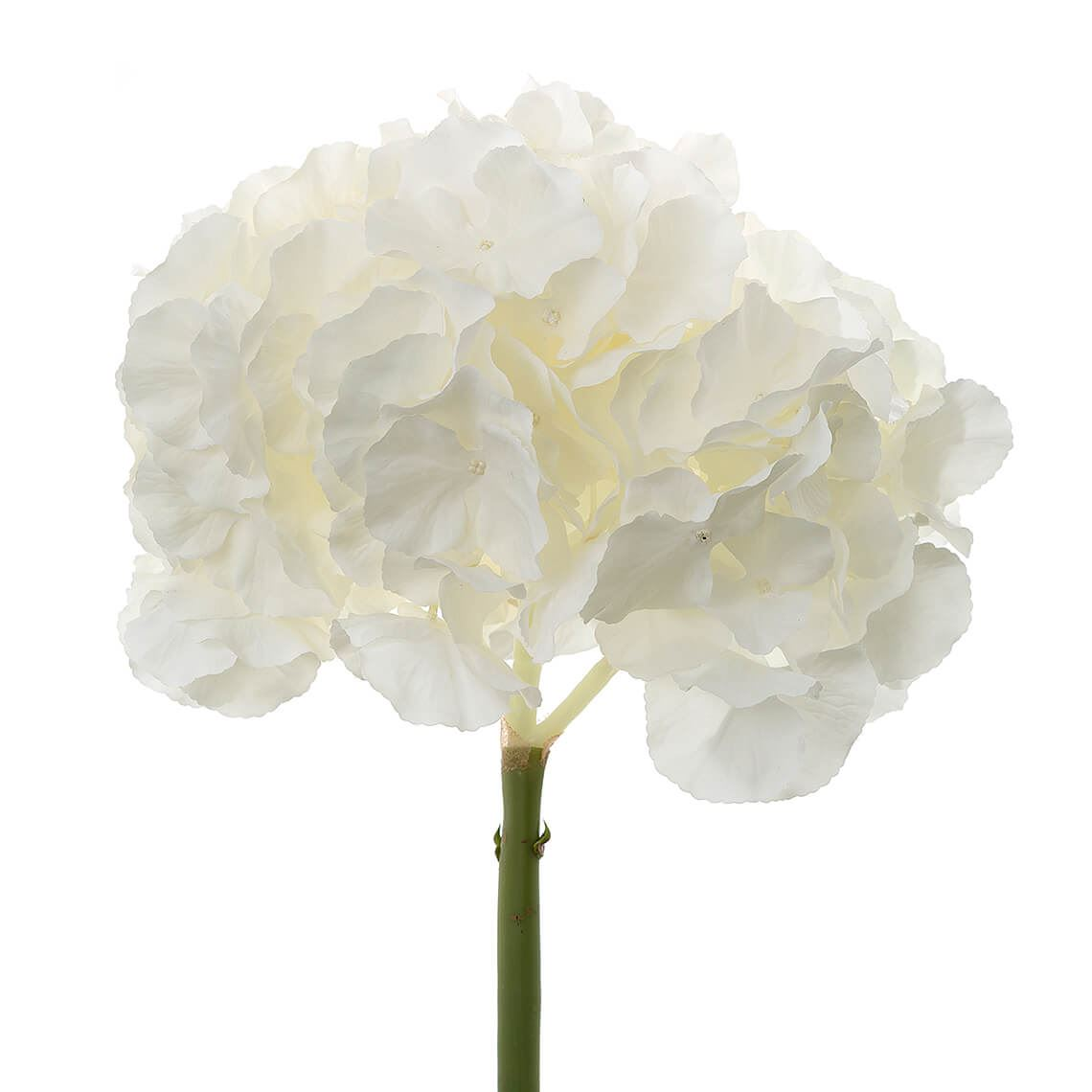 Flora Hydrangea Stem Artificial Flower Size W 22cm x D 22cm x H 54cm in White Plastic/Polyester Freedom by Freedom, a Plants for sale on Style Sourcebook