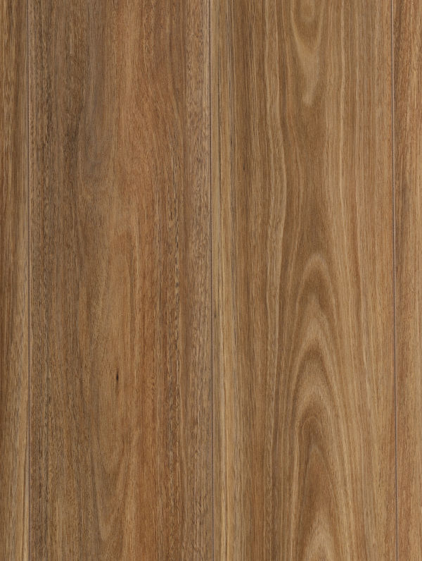 Kindra Spotted Gum by Plantino Laminate Noosa, a Medium Neutral Laminate for sale on Style Sourcebook