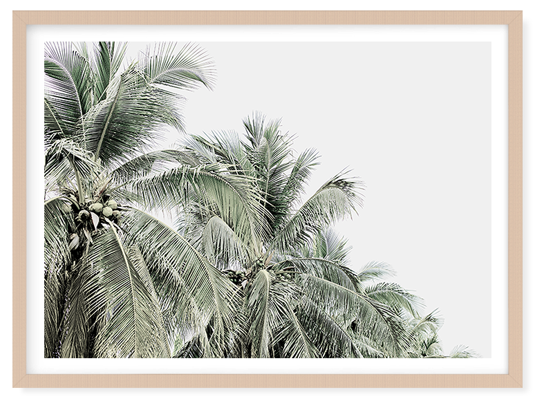 Tropical Palms by Boho Art & Styling, a Prints for sale on Style Sourcebook