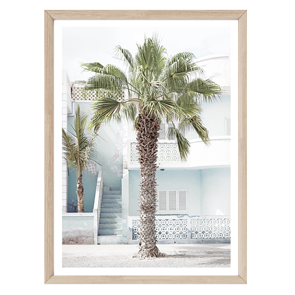 Cape Palm - Blue by Boho Art & Styling, a Prints for sale on Style Sourcebook