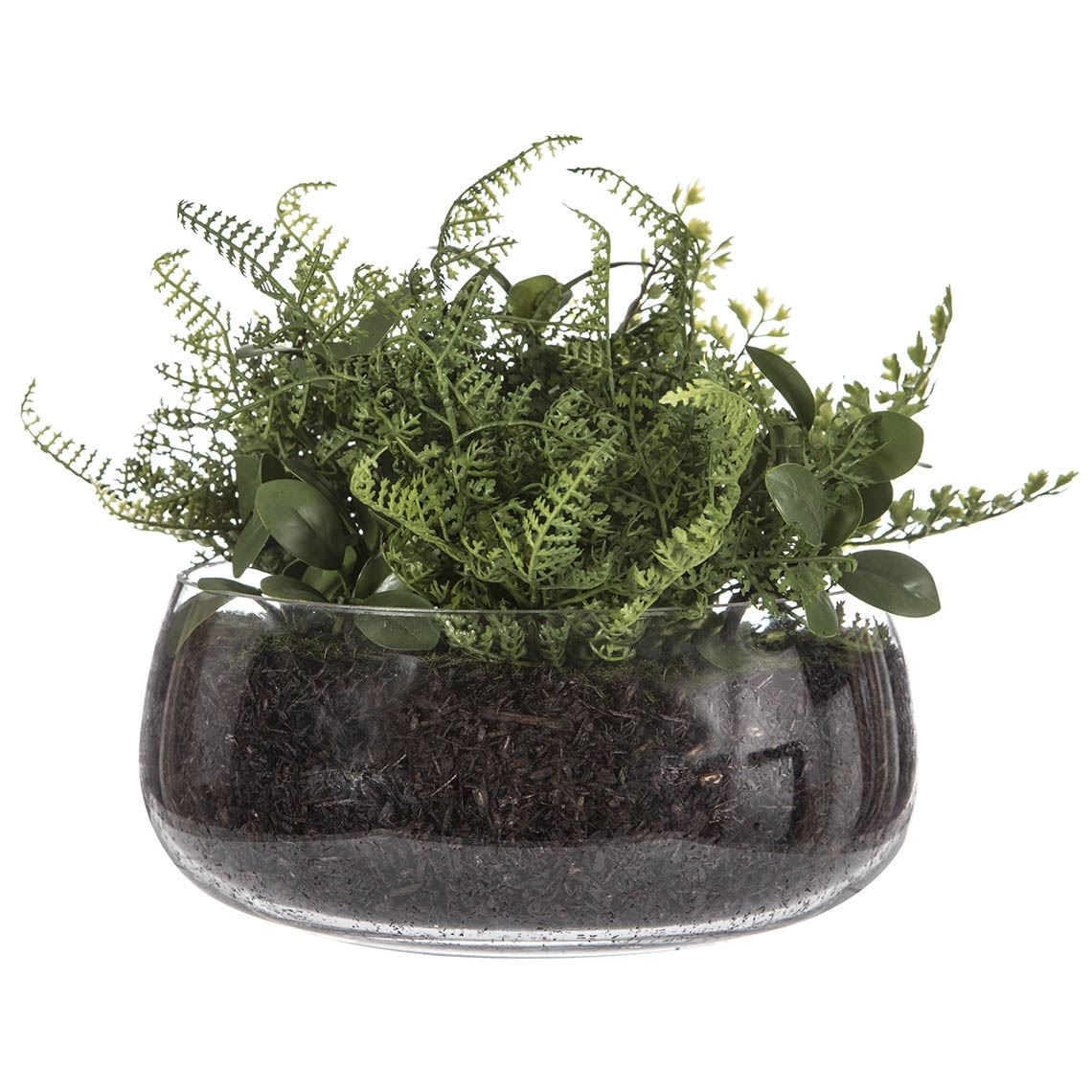 Leather Fern Mix Size W 29cm x D 3cm x H 21cm in Green/Glass Plastic/Glass Freedom by Freedom, a Plants for sale on Style Sourcebook