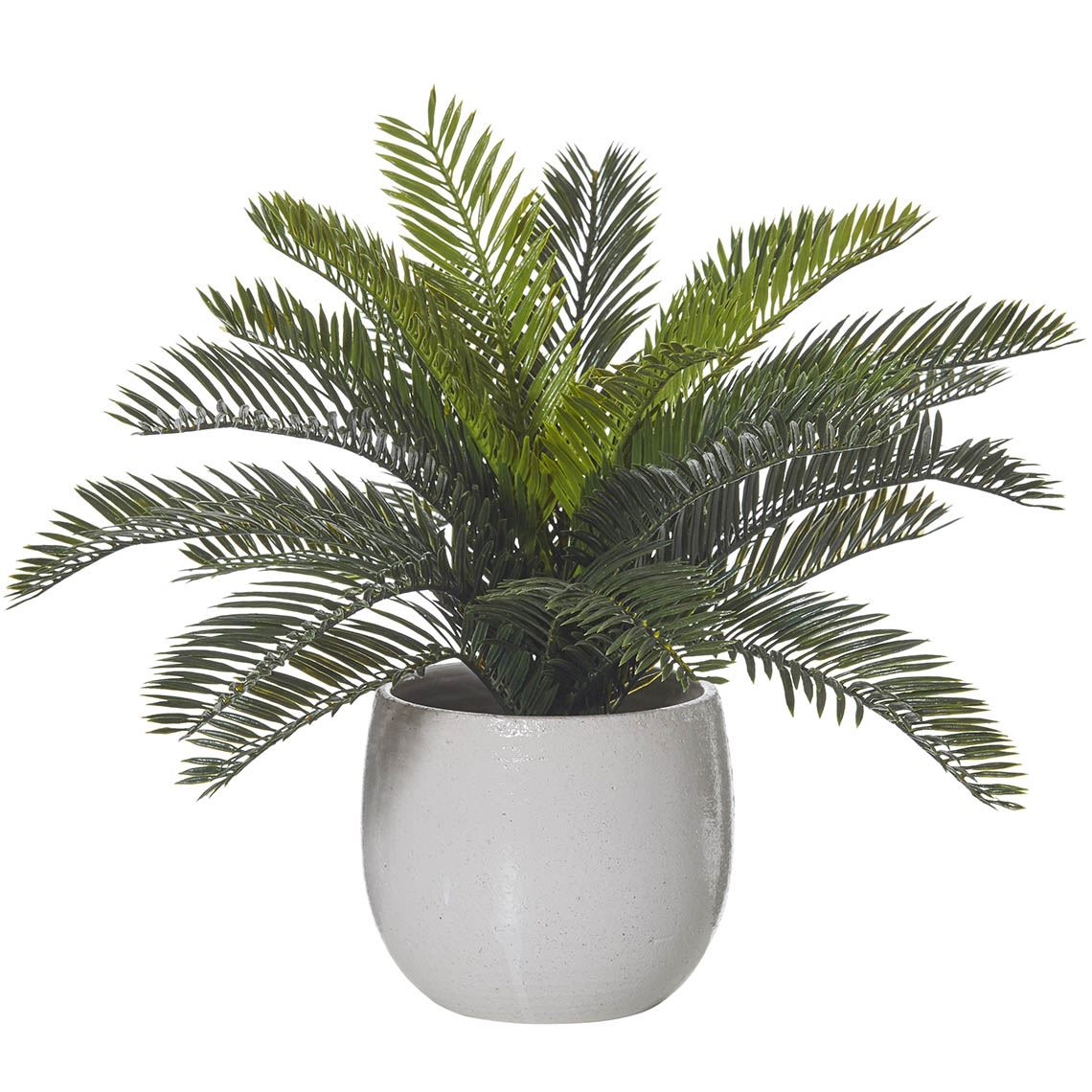 Cycas Bush Artificial Foliage Size W 43cm x D 43cm x H 32cm in Green Plastic/Ceramic Freedom by Freedom, a Plants for sale on Style Sourcebook