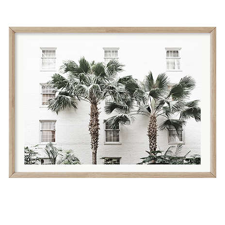 Twin Palms by Boho Art & Styling, a Prints for sale on Style Sourcebook