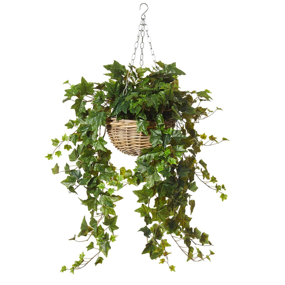 Forest Ivy Bush Artificial Foliage Size W 70cm x D 65cm x H 113cm in Green Plastic/Wire Freedom by Freedom, a Plants for sale on Style Sourcebook