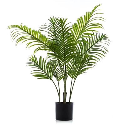 Home Republic Potted Plants   Areca Palm 100cm By Adairs by Adairs, a Plants for sale on Style Sourcebook