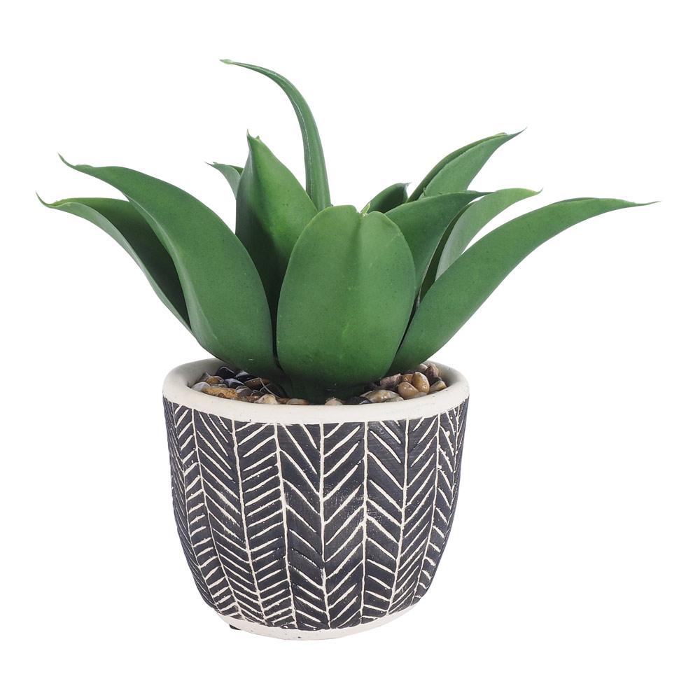 De Fleurs Aloe Pot 30.5 Cm by Early Settler, a Plants for sale on Style Sourcebook