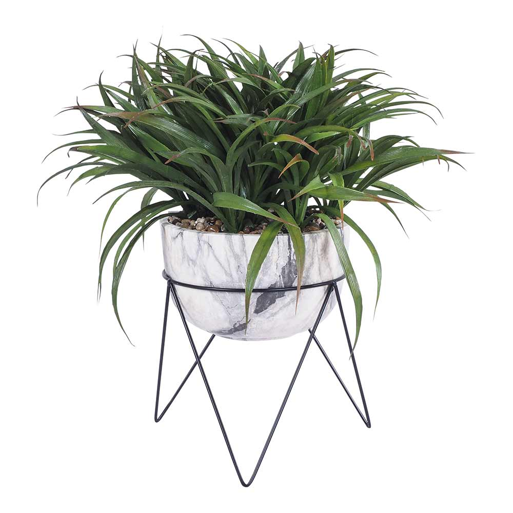 De Fleurs Grass Pot With Stand 60 Cm by Early Settler, a Plants for sale on Style Sourcebook