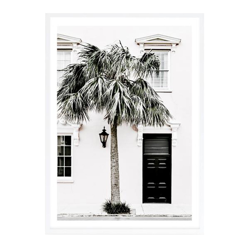 Palm House II Photo Art Print by The Print Emporium, a Prints for sale on Style Sourcebook