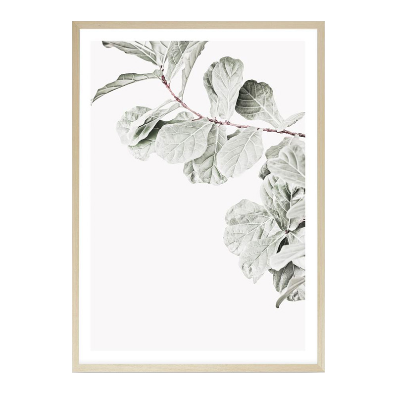 Fiddle-Leaf Fig II Photo Art Print by The Print Emporium, a Prints for sale on Style Sourcebook