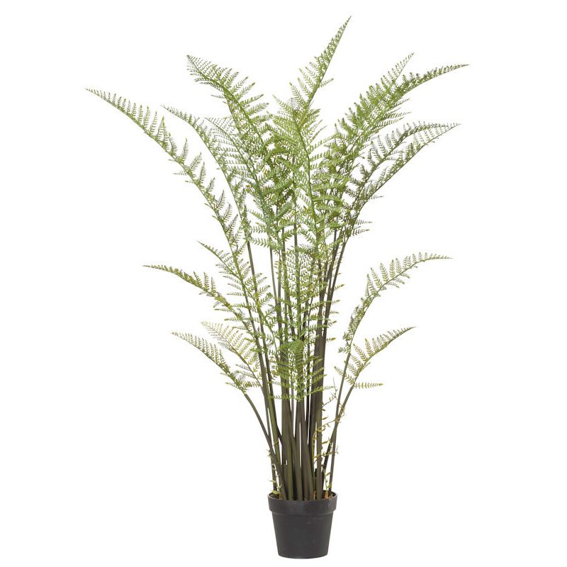 Tree Fern Garden Pot by Oz Design Furniture, a Plants for sale on Style Sourcebook