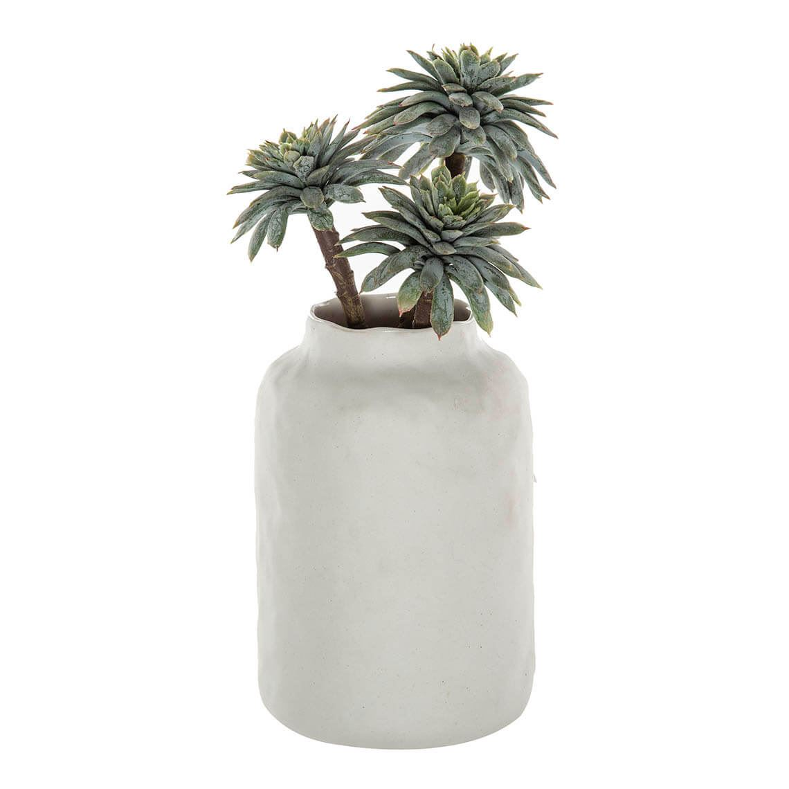 Palm Echeveria Kesia Vase Size W 12cm x D 10cm x H 25cm in White Freedom by Freedom, a Plants for sale on Style Sourcebook