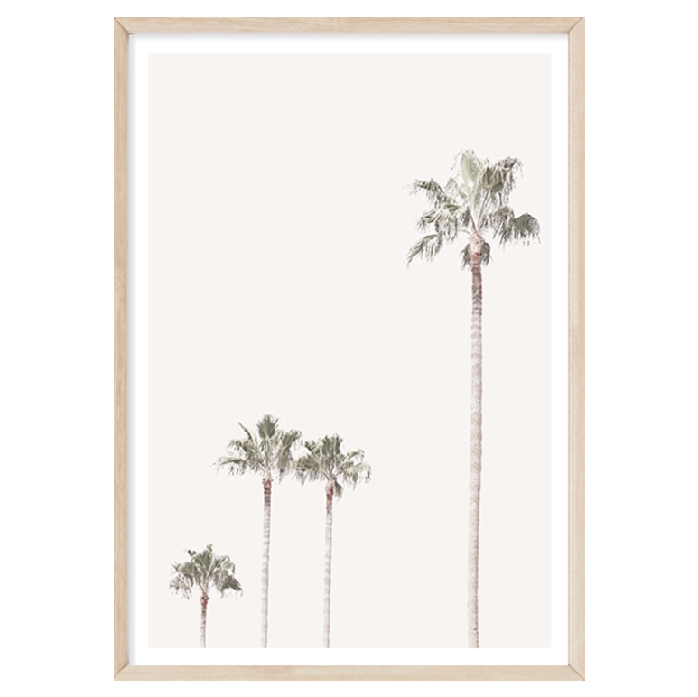 Pastel Palms by Boho Art & Styling, a Prints for sale on Style Sourcebook