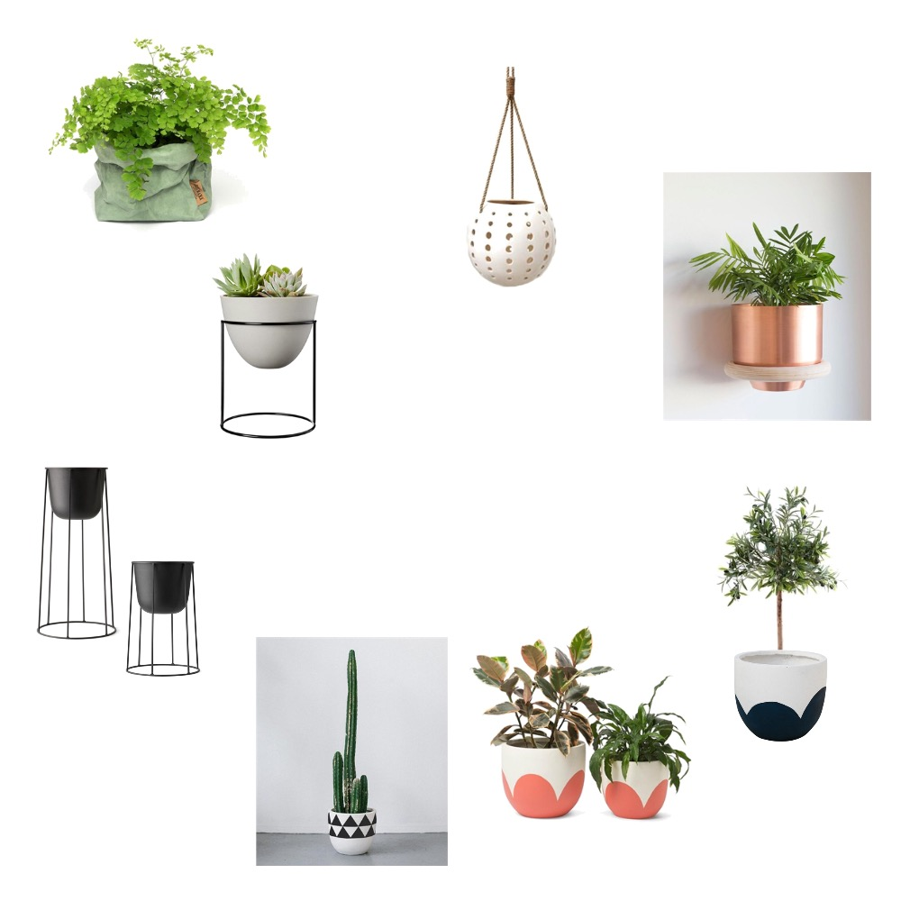 Plants and pots Mood Board by Jesssawyerinteriordesign on Style Sourcebook