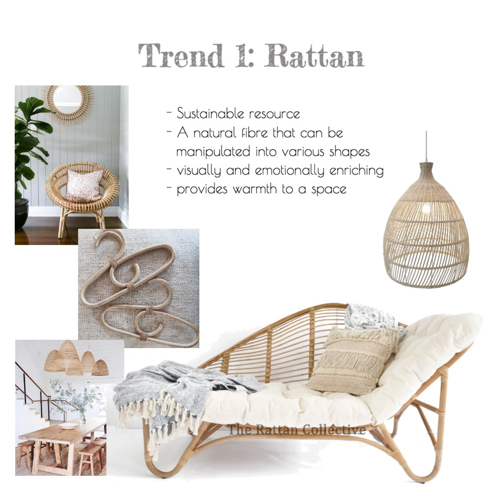 Rattan Mood Board by Jess_Sabharwal on Style Sourcebook