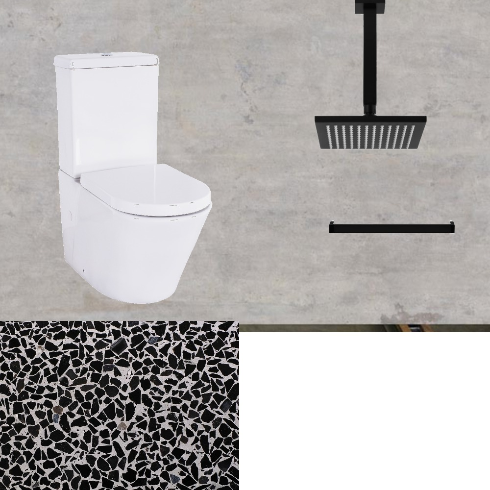 downstairs shower and toliet Interior Design Mood Board by gaynoremcarthur on Style Sourcebook