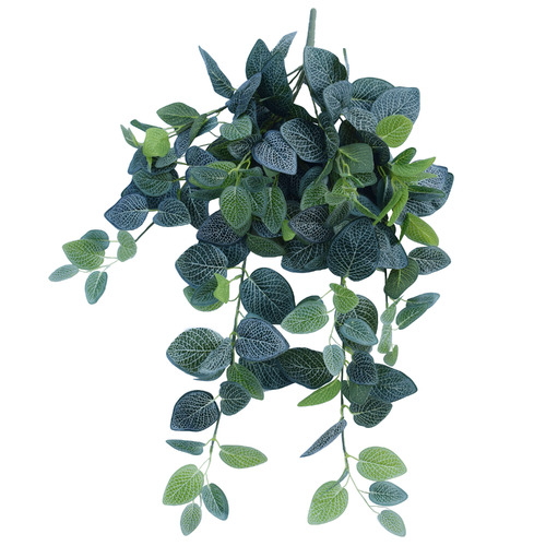 80cm Faux Fittonia Hanging Garland Bush by Temple & Webster
