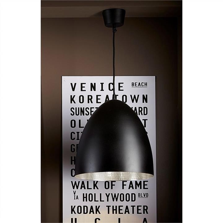Egg Metal Pendant Light, Black/Silver