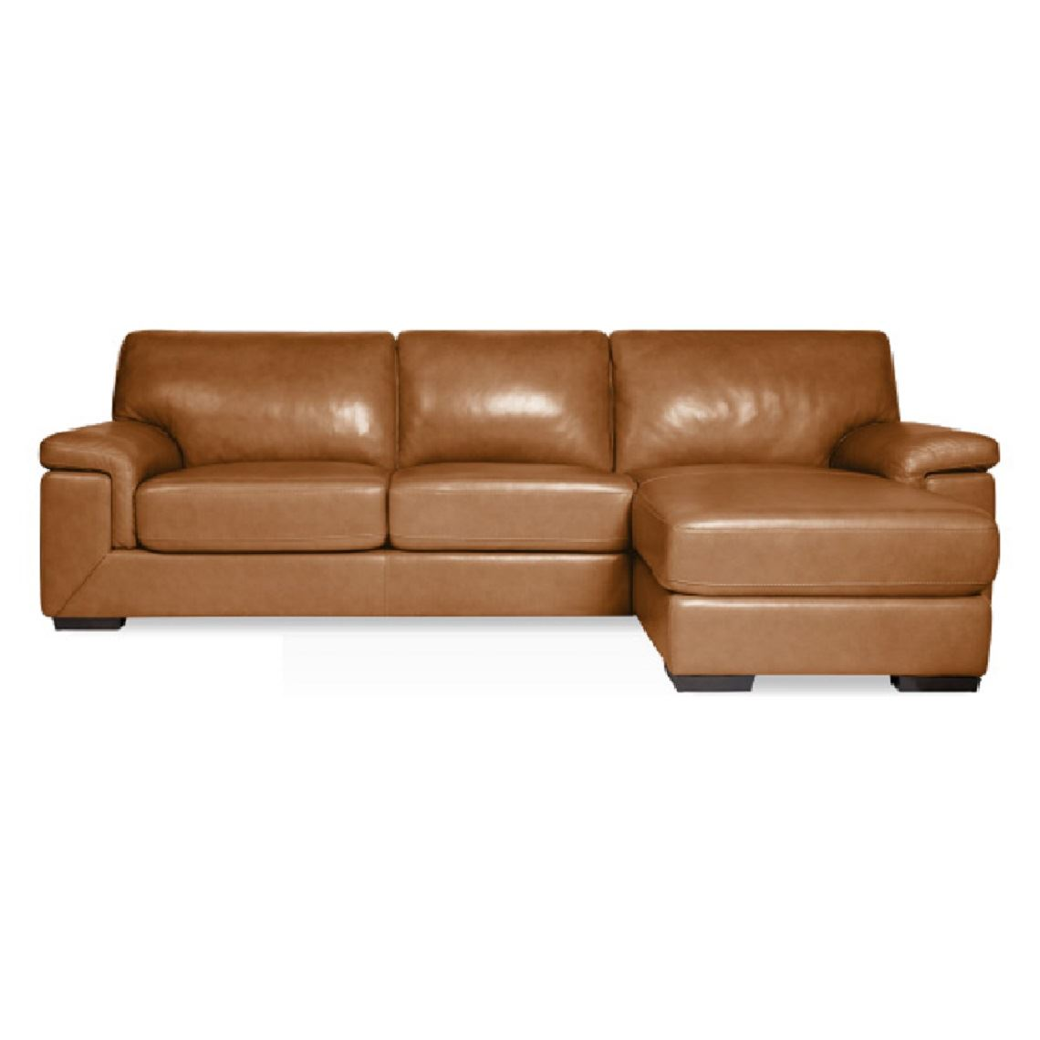 Barret 2 5 Seat Leather Modular Sofa W Right Chaise Size W 289cm X D 164cm X H 89cm In Caramel Leather Foam Fibre Freedom By Freedom Style Sourcebook