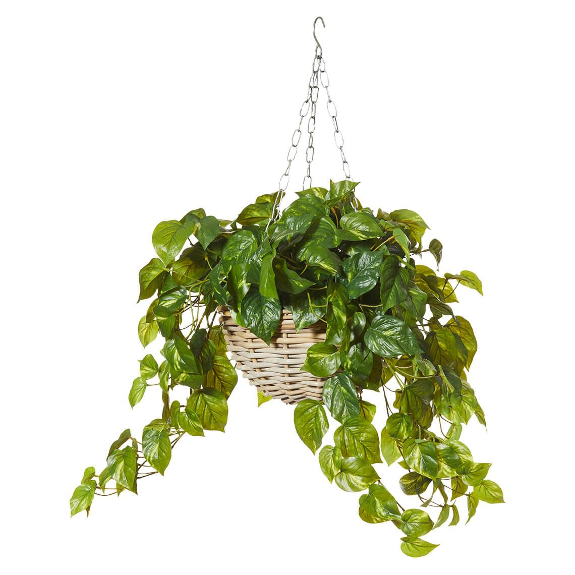 Rattan Hanging Bowl And Artificial Plant Size W 60cm x D 60cm x H 85cm in Green Plastic/Wire Freedom