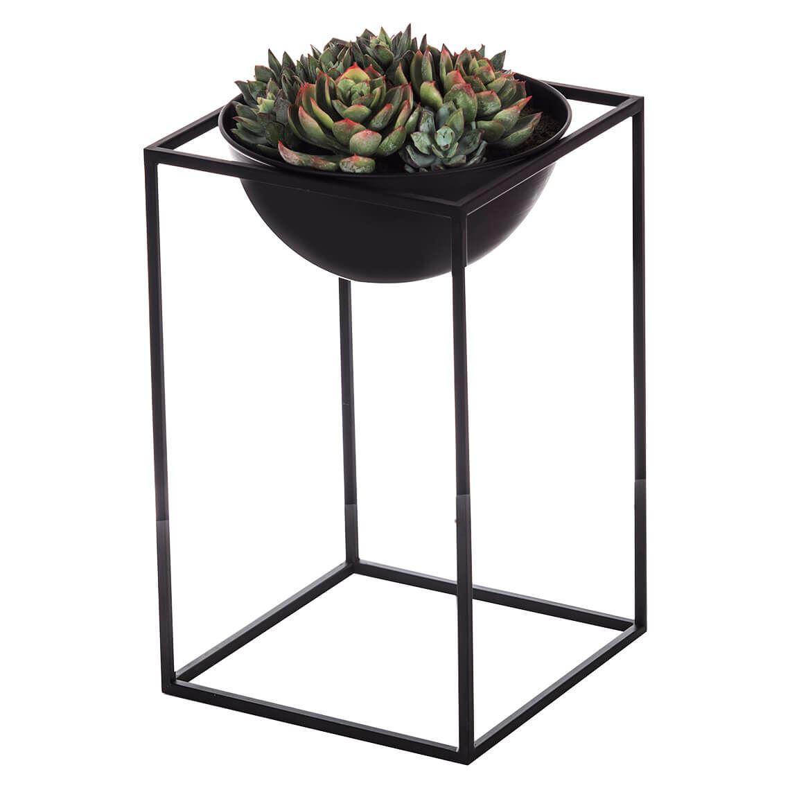 Lotus Echeveria Mix Rectangle Planter Size W 20cm x D 20cm x H 35cm in Black Freedom