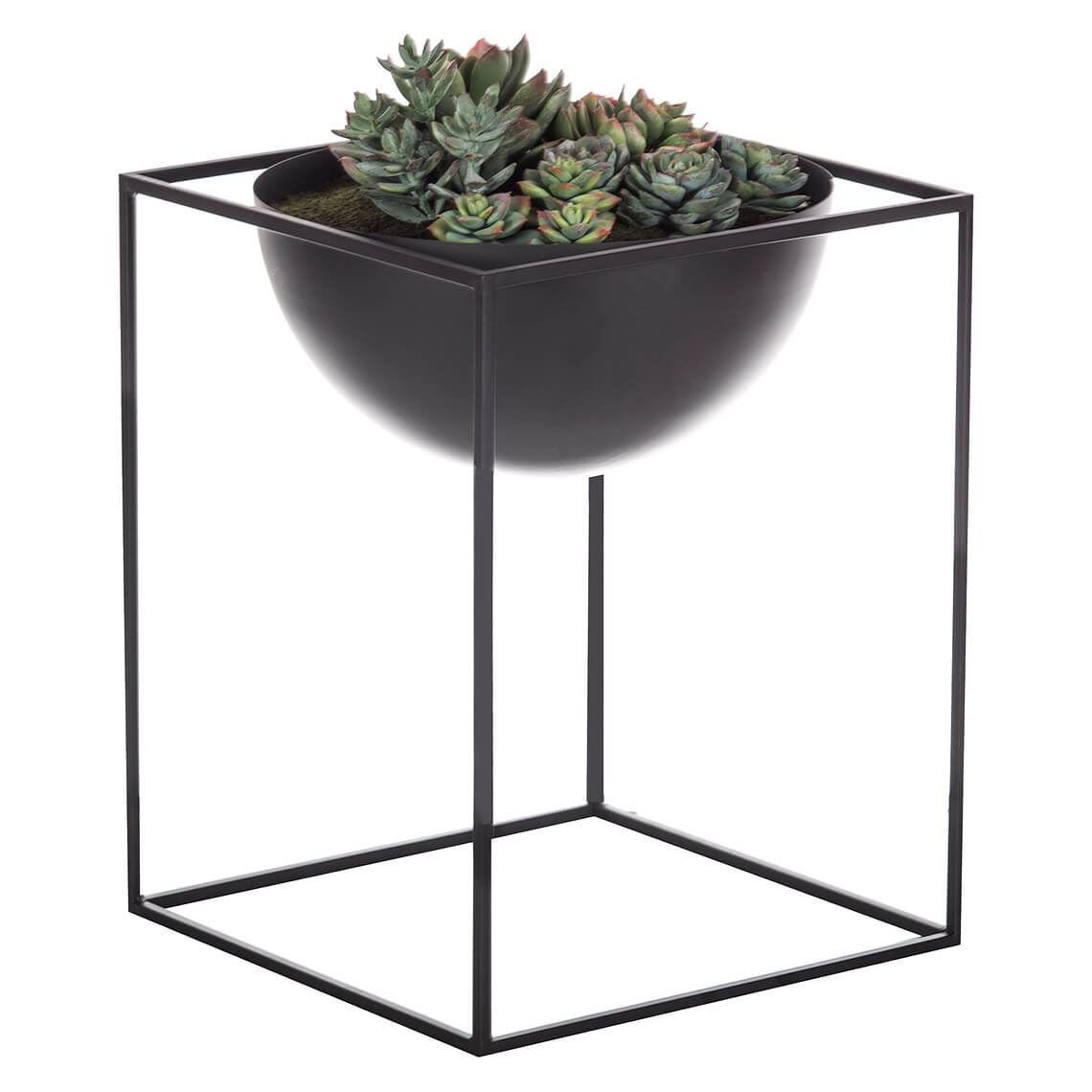 Lotus Echeveria Mix Cube Planter Size W 20cm x D 20cm x H 34cm in Black Freedom