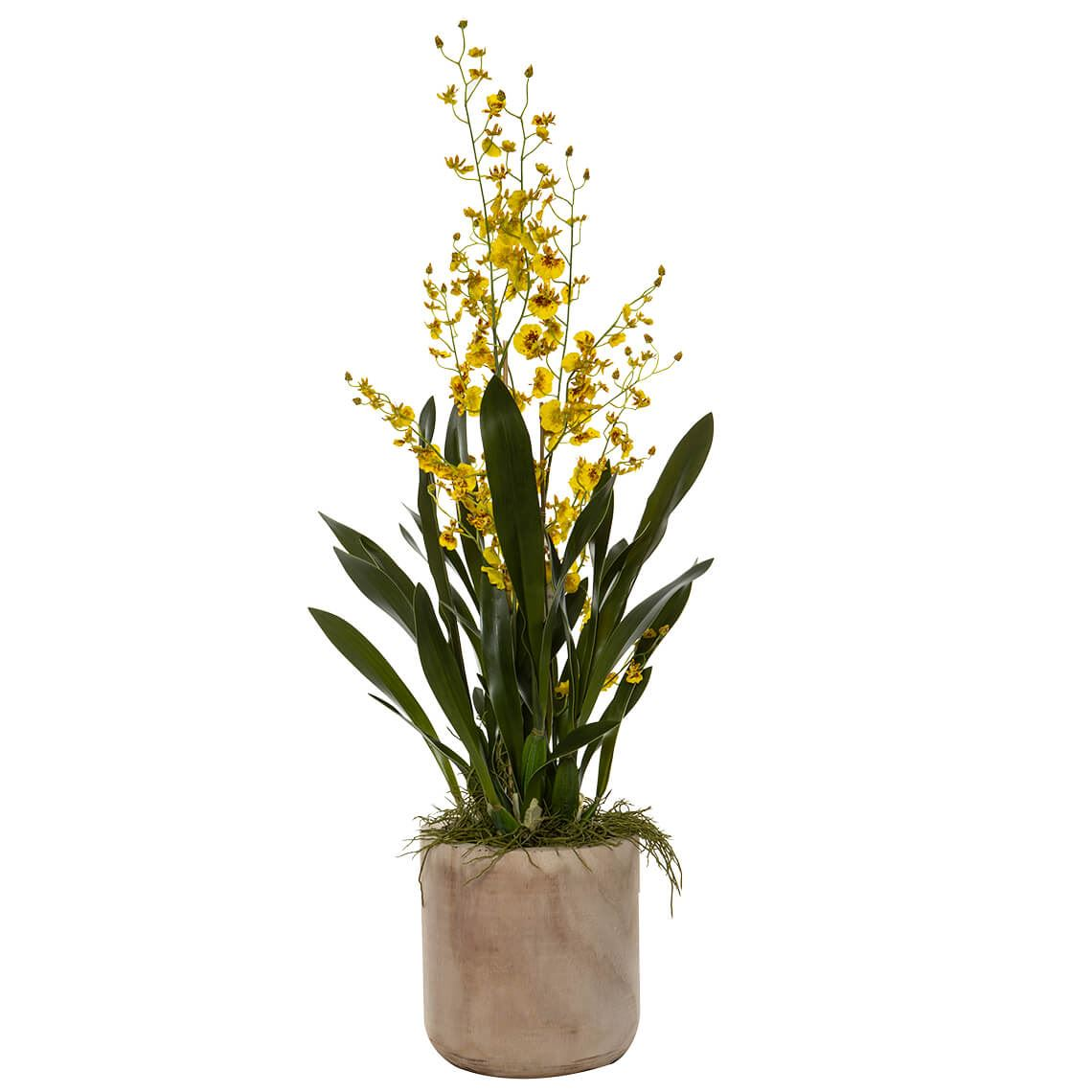 Dancing Orchid Size W 50cm x D 61cm x H 100cm in Yellow Plastic/Wood Freedom