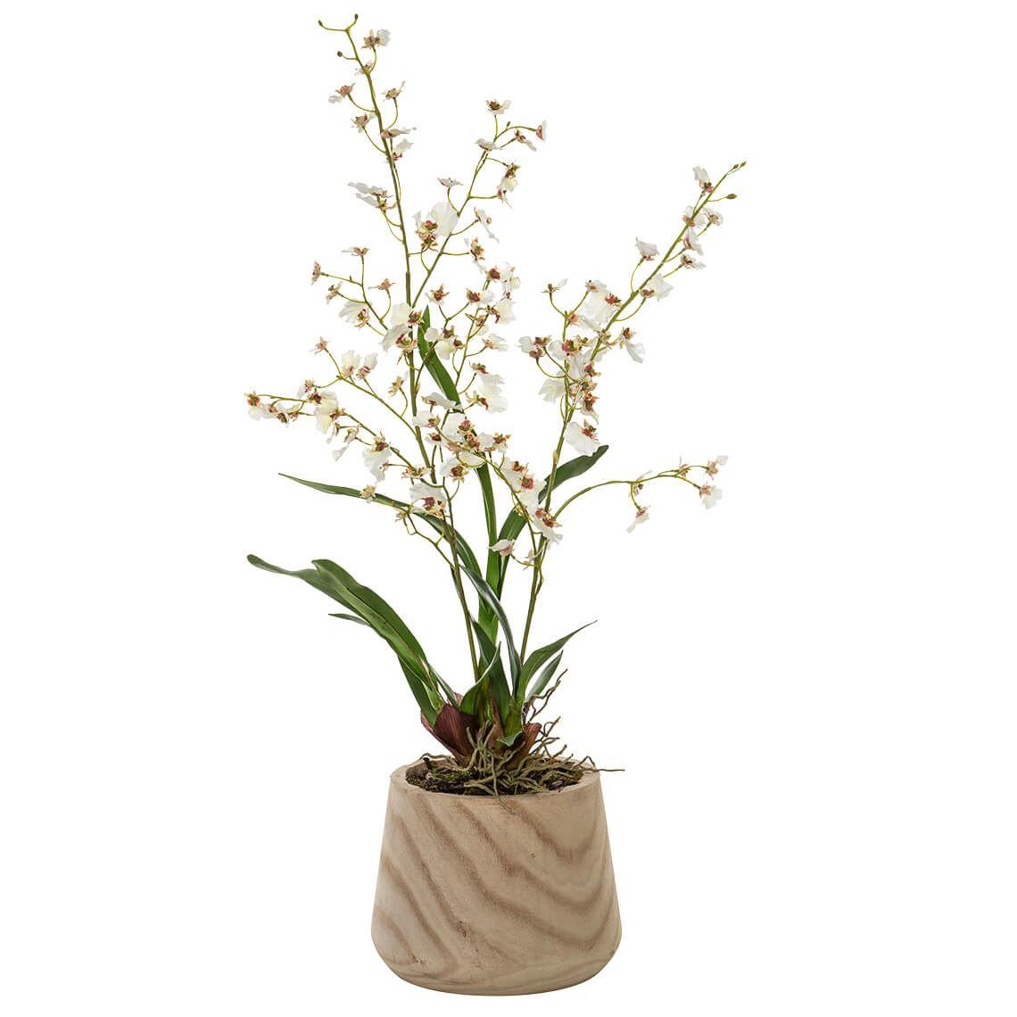 Dancing Orchid Basket Size W 28cm x D 45cm x H 73cm in Green Plastic/Wood Freedom