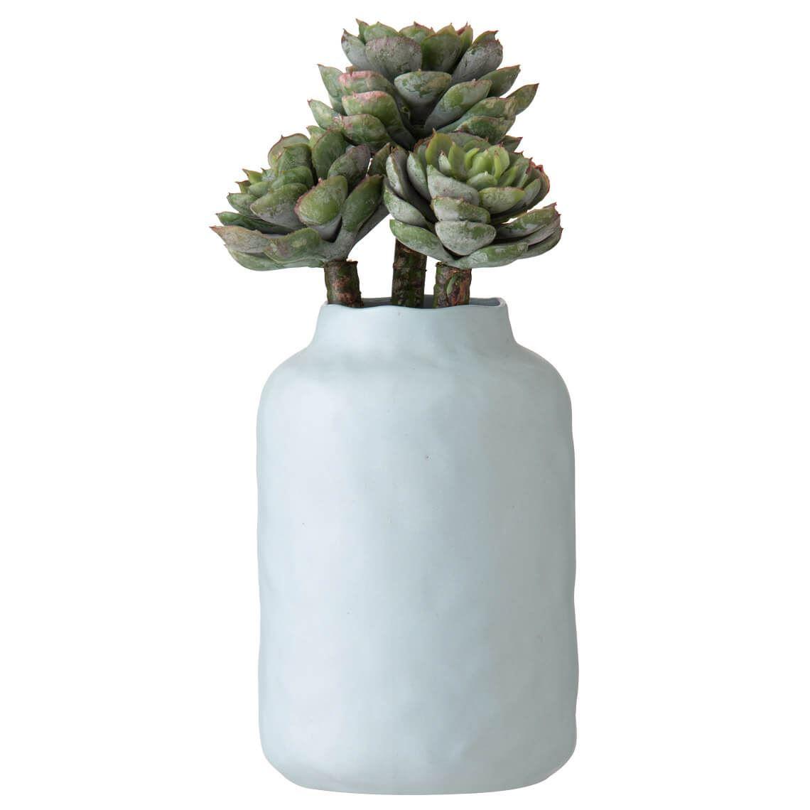 Pinecone Echeveria Kesia Vase Size W 12cm x D 10cm x H 23cm in Blue Freedom